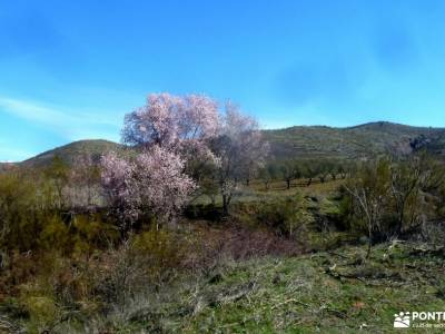 Cárcavas Alpedrete de la Sierra y Cerro Negro; singles senderismo montaña guias de senderismo